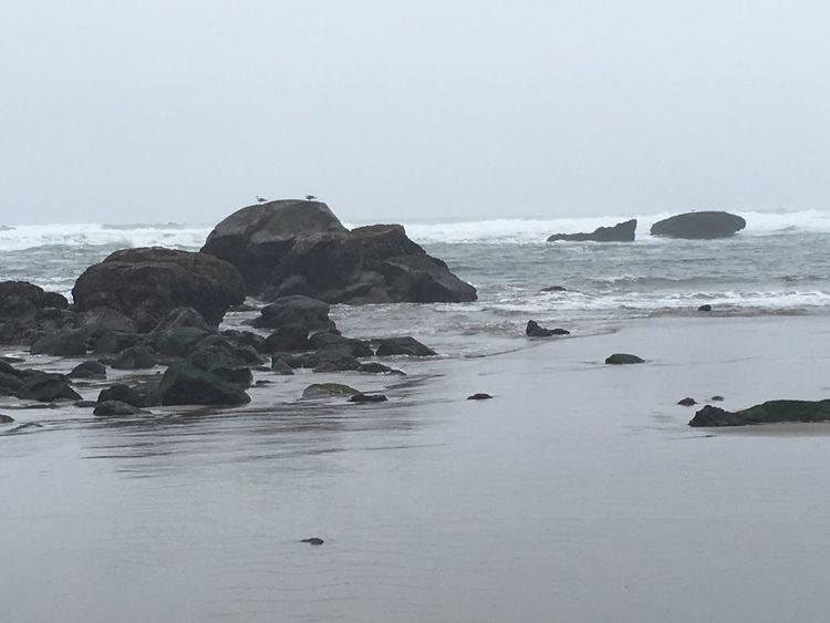 Life Is A Beach BEACH!  Unfiltered Enjoying Life Nofilter#noedit Beachphotography Omg it's raining so hard!! CCheck This OutAAdventuresoOregon CoastmMyview