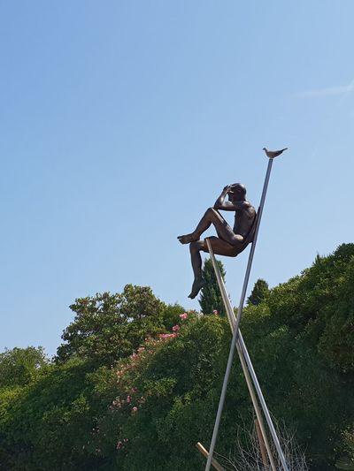 Bird Statue Tree Headwear Full Length Sports Helmet Men Clear Sky Skill  Sky