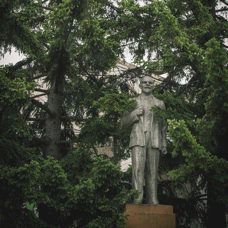 Ленин в елках. Бэк ин юэсэса. СССР совокжив совокстайл Совок