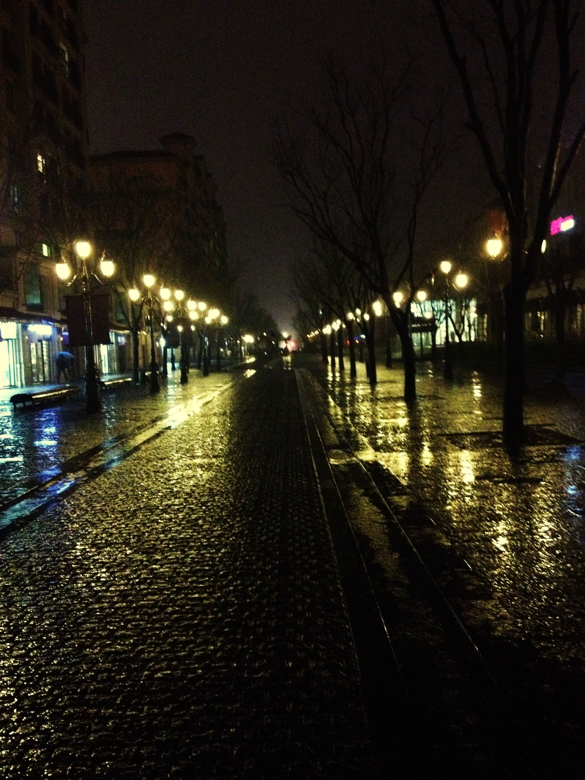 night, illuminated, street light, the way forward, built structure, architecture, building exterior, street, lighting equipment, city, transportation, bare tree, diminishing perspective, road, outdoors, season, wet, winter, empty, water