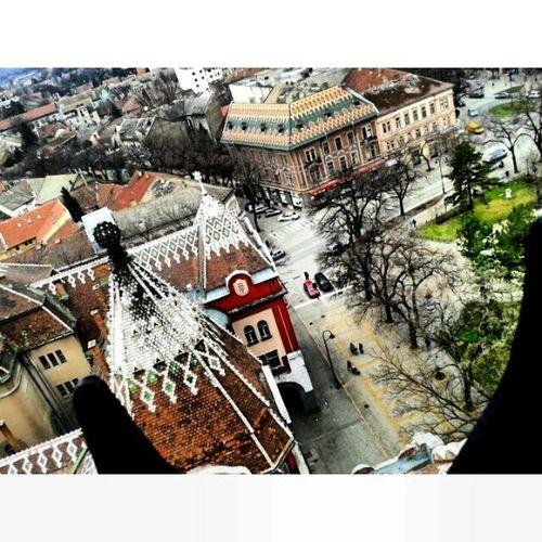 Još jedna slika sa vrha Gradske kuće :) Pic3 Poslednja Beautifulday Subotica 
