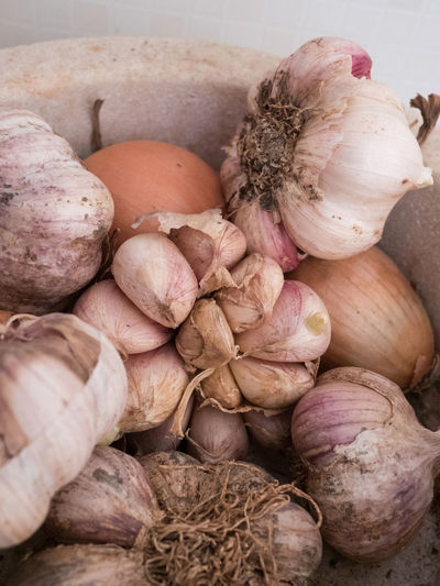 Close-Up Of Rotten Onions In Garbage Bin