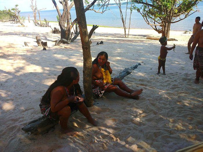 Amazônia Brasileira Indiobrasileiro Tribo Indígena Amazonas Indios Beach Sand Sitting Full Length Tree Togetherness Shadow People Nature