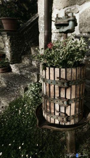 Showcase April Memory Storic Winepress Z3 Xperia