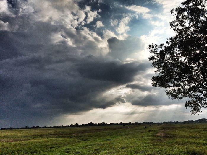 Catchig some rays Sunset Beautiful Sunset Clouds Tadaa Community