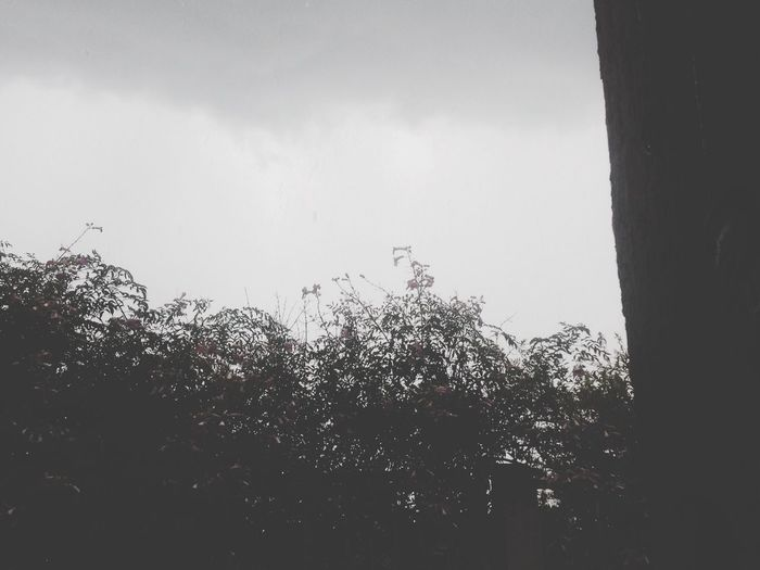 Clima Perfect Lo Amo ❤️😍