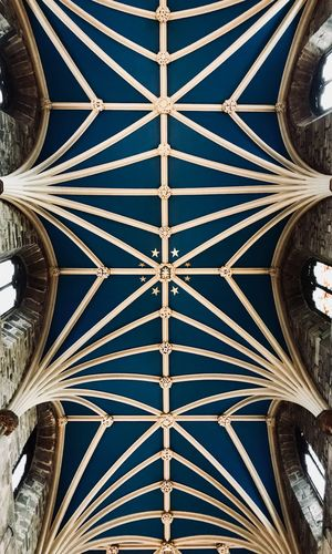St. Giles Cathedral Edinburgh Scotland The Week On EyeEm Church Gothic Architecture Blue No People Ceiling
