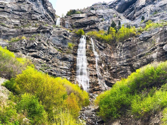 The Falls Falls