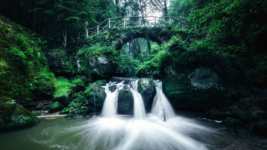 Beauty In Nature Blurred Motion Falling Water Flowing Flowing Water Forest Green Color Growth Land Long Exposure Motion Nature Outdoors Plant Power In Nature Rainforest Rock Rock - Object Scenics - Nature Solid Tree Wasserfall Water Waterfall