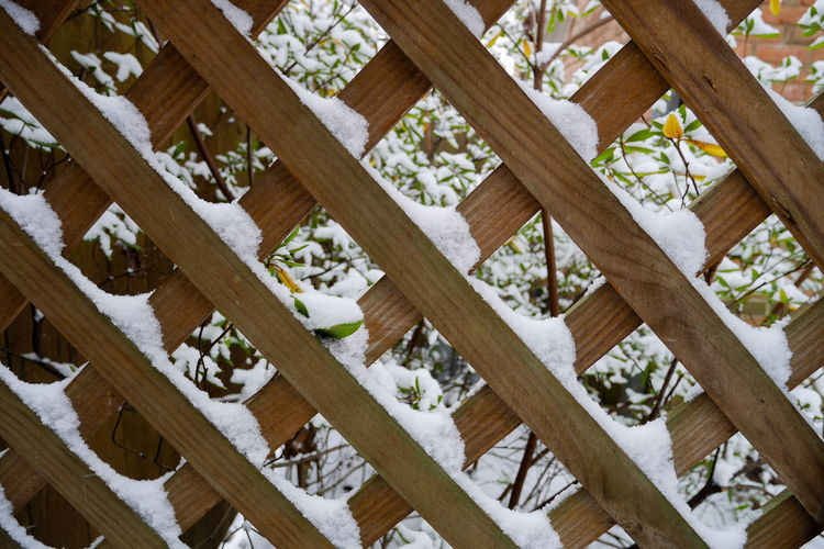 Wooden Lattice with Snow Barrier Cold Outside Cold Weather Diagonal Lines Diagonals Lattice Lattice Pattern New Snow Outdoors Snow Pattern Winter Wood - Material Wooden Wooden Construction
