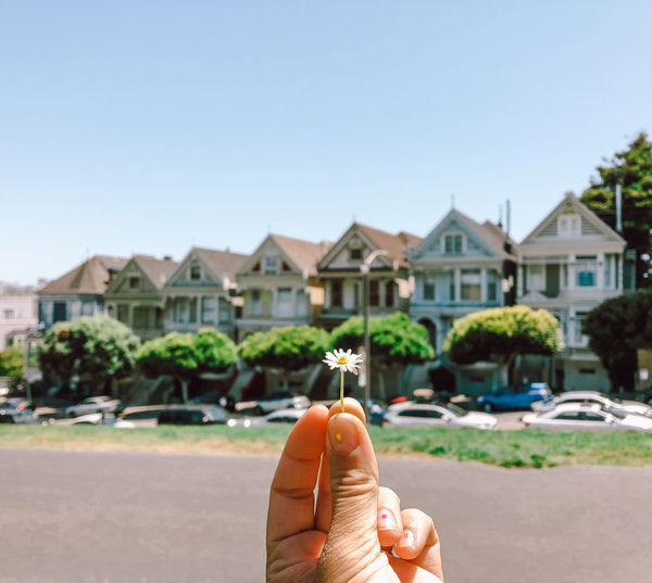 Person holding flower by pained ladies buildings in san francisco against sky