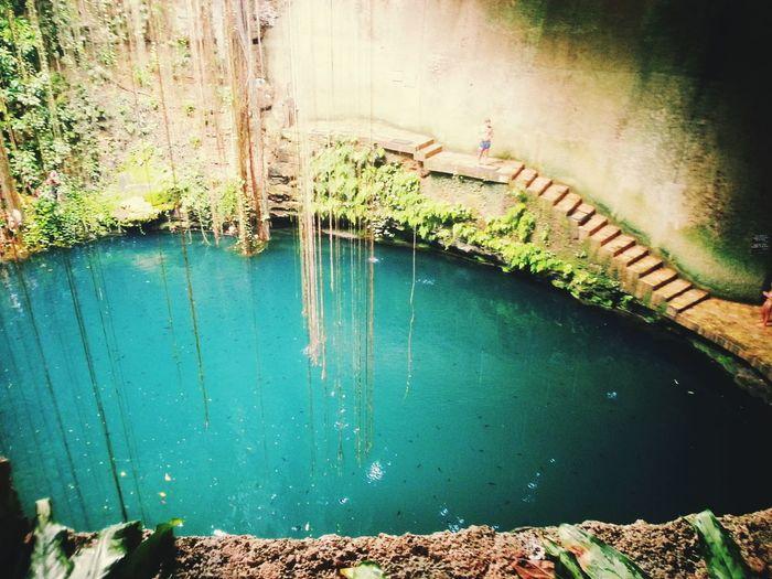 Cenote Ik Kil Cenote EyeEmNewHere EyeEm Nature Lover Mexico Yucatán, México Ik Kil Lagoon Ruins Water Architecture Growing Plant Life Ivy