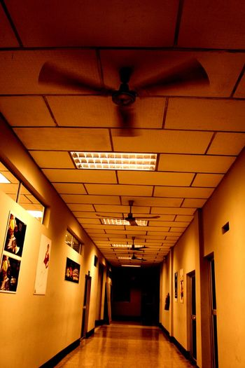 Where nightmares take place Indoors  Corridor Architecture No People Day Suspenseiskillingme Terror Edited Photography Yellow Brown Photo Photooftheday Stairs Simmetria Walking Around The City  Abandoned Buildings HighSchoolMemories Highschooldays Horror Photography Canon700D Lights And Shadows Lights In The Dark Full Length Lonely