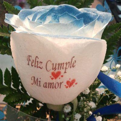 Rosaazul con dedicatoria grabada en el petalo, en www.graficflower.com son especialistas en envios de Floresadomicilio , te ofrecen los Ramosdeflores mas originales del mercado y las Rosas mas innovadoras