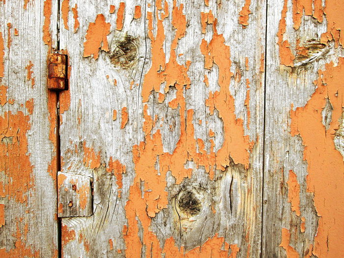 Full Frame Shot of Scratched Orange Wooden Board Detail Architecture ArchiTexture Backgrounds Close-up Detail Deterioration Door Full Frame Grey Old Orange Pattern Peeling Off Rough Rusty Scratched And Cracked Wood Texture Textured  Textures And Surfaces Weathered Wood Wood - Material Wooden