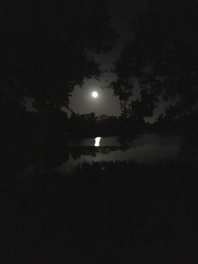 Midnight Stroll Night Sky Moon Night Sky Full Moon Bright Dark Darkness And Light Beauty In Nature Tranquil Scene Tranquility No People Outdoors Astronomy Water Moonlight Moonlight On The Water Blackandwhite Beautiful Beautiful Nature Beautiful Night Reflection