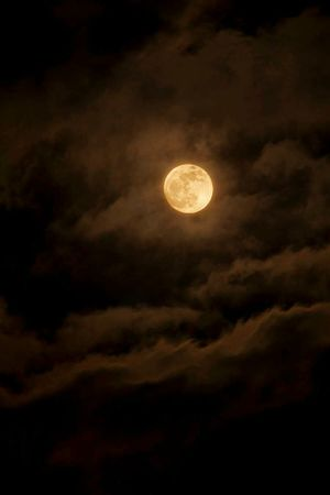 Moon Sky Full Moon Night Cloud - Sky Astronomy Midnight Beauty In Nature Nature Scenics