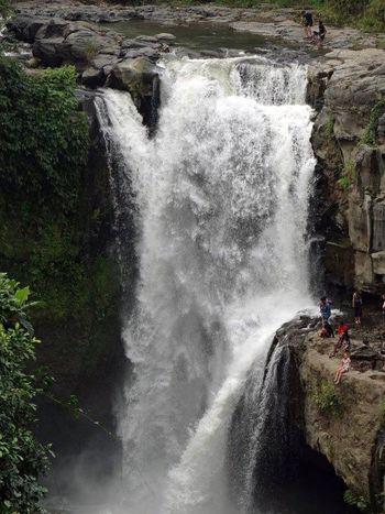 Waterfall Tegalalang Ubud, Bali Water Beautiful Landscape Photography Travel Photography Jungle Nature