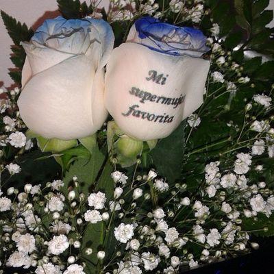 Ramo de rosas con el filo azul y un mensaje tatuado en el petalo, son rosas naturales, en nuestra web de flores a domicilio http://www.gracflower.com puedes encontrar nuestro catalogo de flores a tu disposicion. Ramodeflores  Ramosdeflores Diadelamadre Rosaazul Rosasazules Regalodiadelamadre Regalos Regalosdecumpleaños