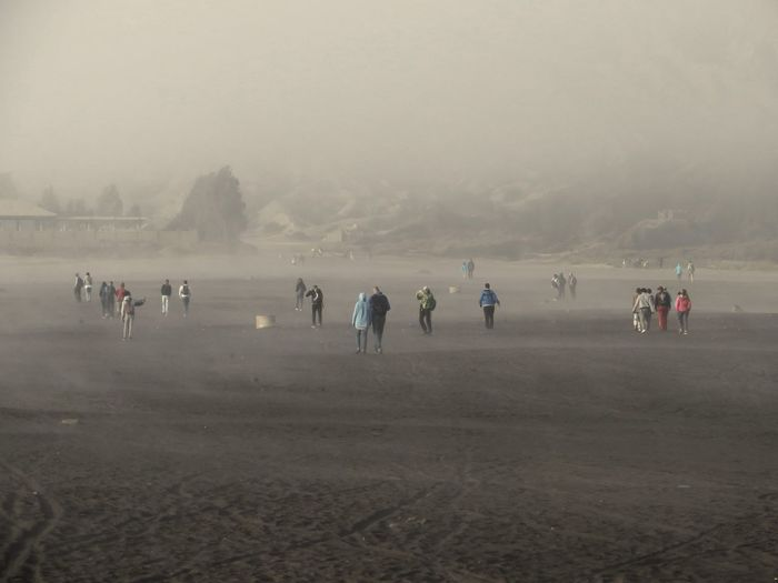 People on field during foggy weather