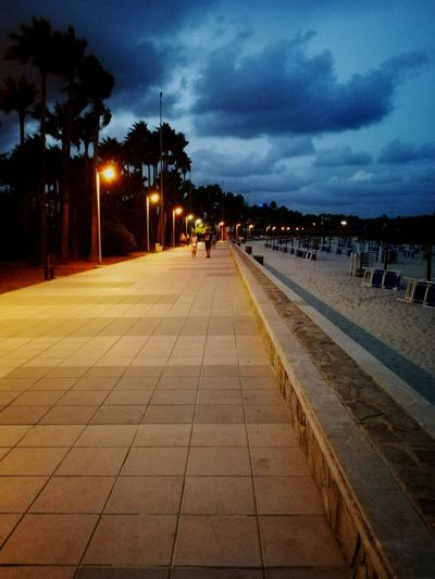 Promenade Beach Promenade Seaside_collection Evening Sky Evening Light Beachwalks Lungomare Shoreline Evening Photography Evening Promenade Walkway Tree Illuminated City Sky vanishing point Diminishing Perspective Empty Road Street Light Pathway Treelined The Way Forward