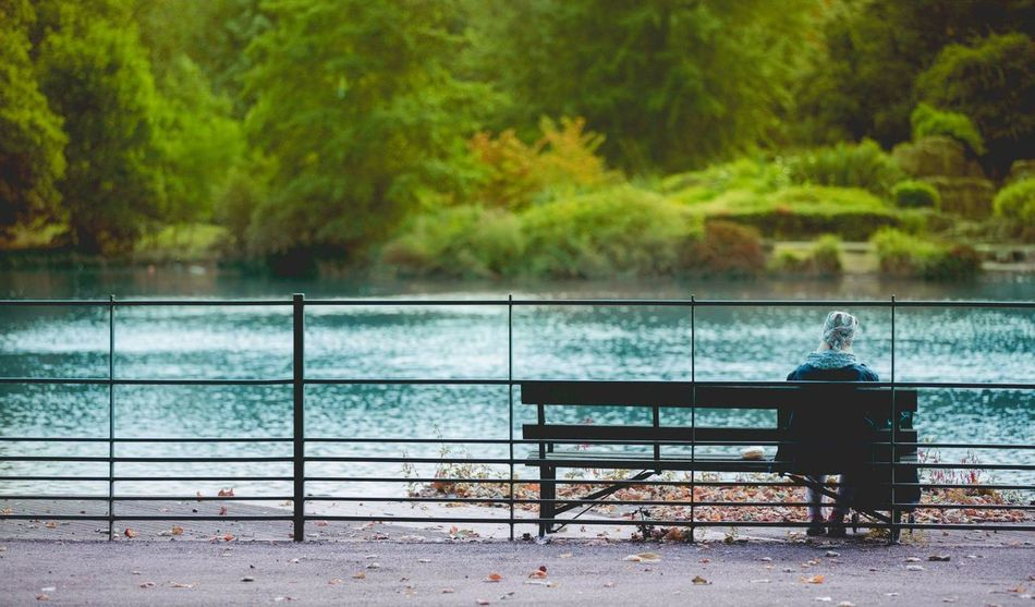 Battersea Park Battersea Chelsea London Streetphotography Park At The Park LONDON❤ Canon 5d Mark Lll Canon 70-200 F2.8 L IS-II