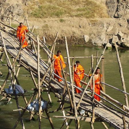 Adult Bouddhism Bouddhist Bouddhist Monk Bouddhist Monks Bridge Day Large Group Of People Luang Prabang, Laos Men Monk  Monks Orange Robes Outdoors People River Teamwork Togetherness Water