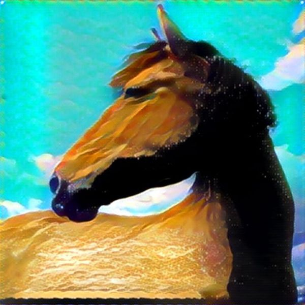 Horse Horse Photography  Buckskin