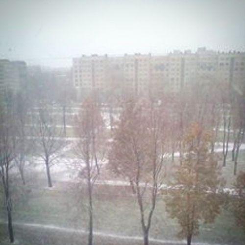 Snow in Sanct-Petersburg! 😃 Первый снег в Санкт -Петербурге
