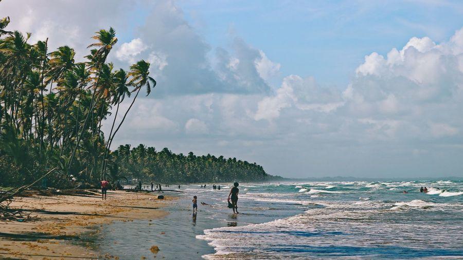 Landscape_Collection Landscape Trinidad And Tobago Seascape Nature Photography Nature_collection Nature Manzanilla Beach Water Tree Sea Full Length Beach Sky Cloud - Sky Shore Sandy Beach Wave Crashing Horizon Over Water Ocean Sand #FREIHEITBERLIN