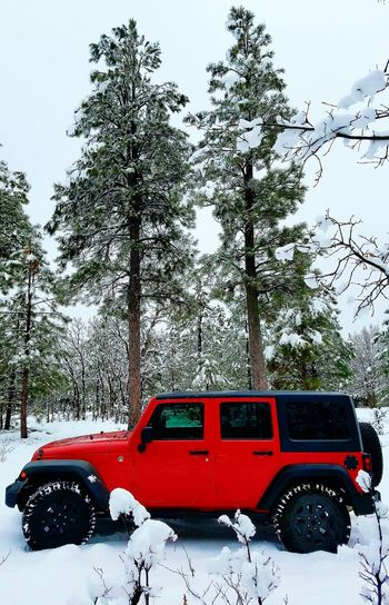 Jeep Wrangler Unlimited Payson, AZ Winter Snowcapped Mountain Outdoors Day Sky