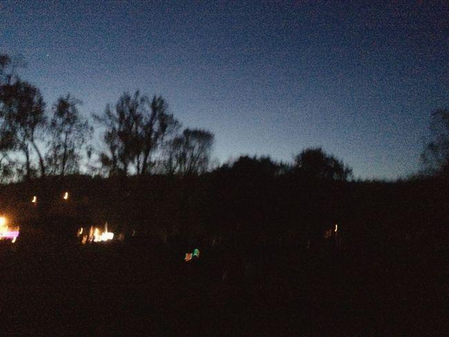 Night Night Lights Trees Night Sky