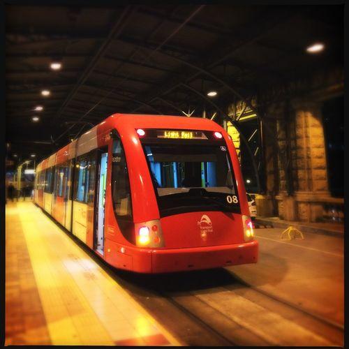 Lightraill Tram