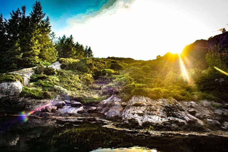 Summer Summertime Good Vibes Lake Mountain Saltwater Viking Norway Norway Nature Nature Photography Nature_collection Nature EyeEmNewHere EyeEm Nature Lover EyeEm Gallery Eyeemnorway Tree Planet Earth Water Waterfall Multi Colored Sunlight Forest Summer Sky Landscape Shining Sunbeam Sun