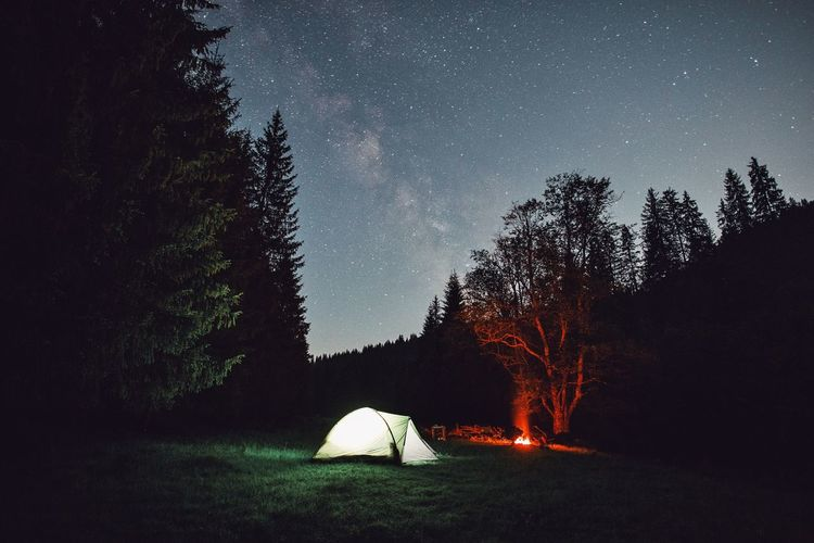 Astronomy Camping Clear Sky Exploring EyeEm Best Shots Forest Galaxy Grass Illuminated Landscape Landscape_Collection Live For The Story Moon Nature Nature Photography Nature_collection Night Outdoor Photography Outdoors Sky Star - Space Tent The Great Outdoors - 2017 EyeEm Awards Tree Wildlife
