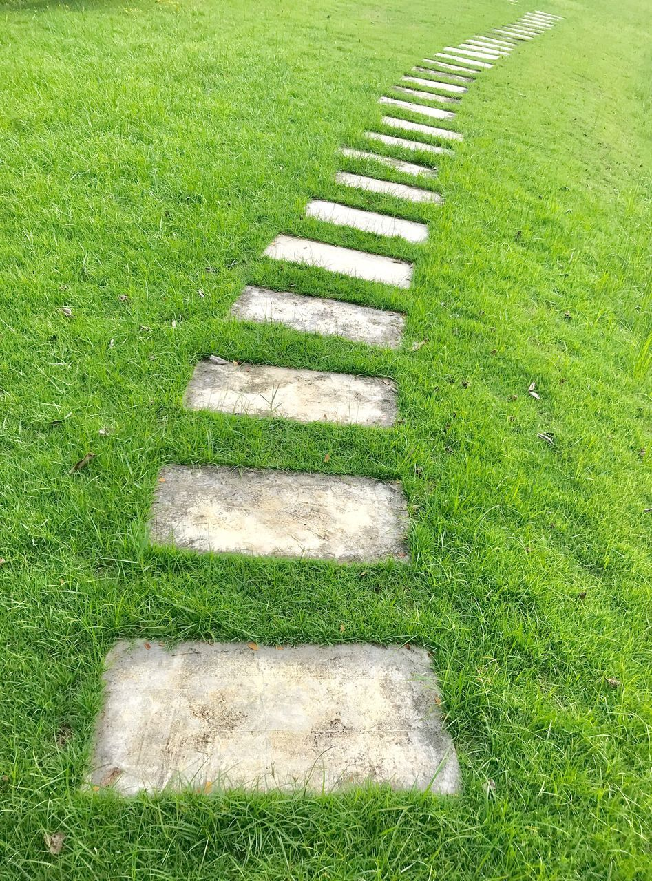 grass, green color, plant, nature, day, no people, land, stepping stone, field, growth, high angle view, in a row, outdoors, staircase, direction, beauty in nature, the way forward, tranquility, footpath, absence