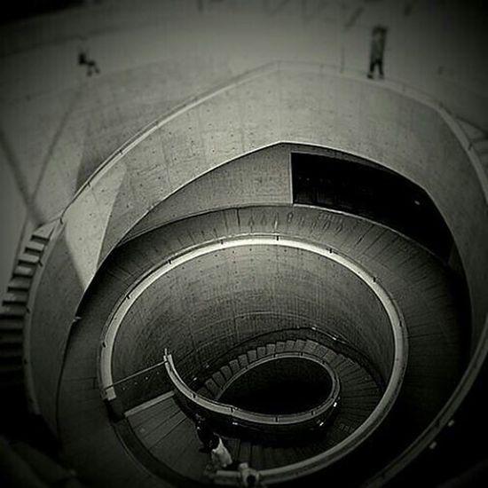 兵庫県立美術館 円形テラス 安藤忠雄 建築 Architecture Monochrome Tadao_ando Stairway Museum Hyogo Japan