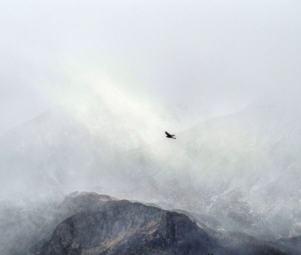 New Zealand Flying Mountain Fog Nature Transportation Outdoors Day Landscape No People Sky Beauty In Nature Hooker Valley, New Zealand Wonder Of Nature Nature