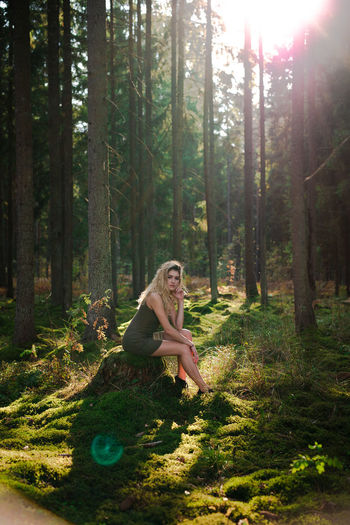 Portrait of woman sitting on land in forest