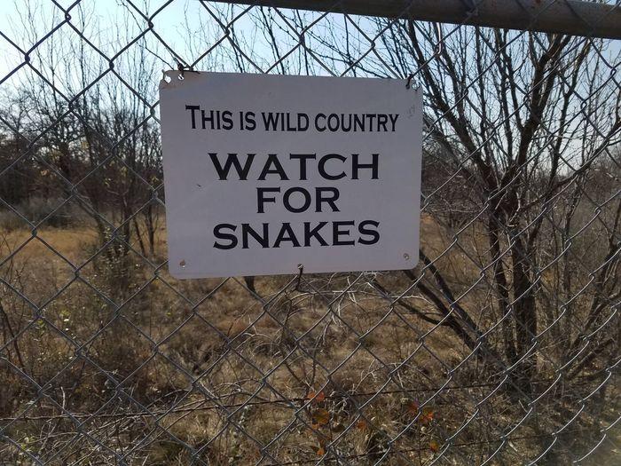 Snake Snake Sign Snake Warning Communication Text Western Script Close-up Sky Warning Warning Sign