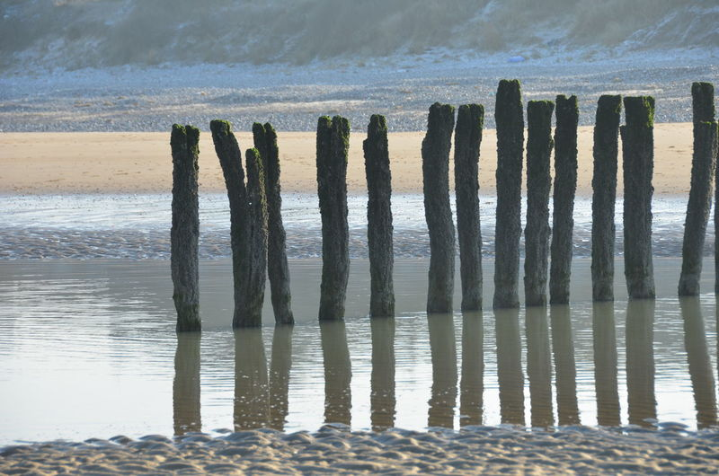 Sticks and sands Sea Beach Sand Reflections In The Water Blue And Grey