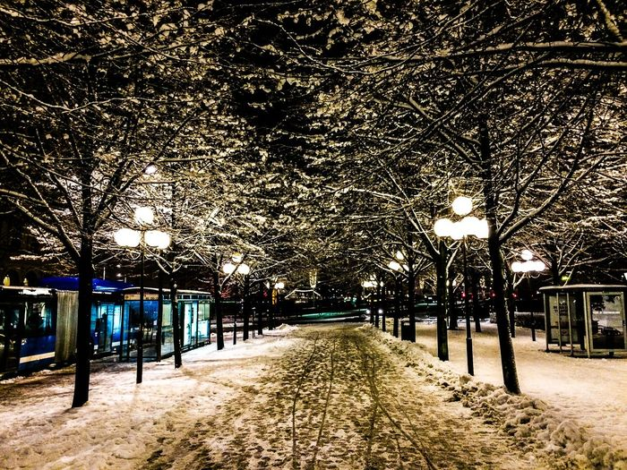 Winter Wonderland Karl XII Snow Porn