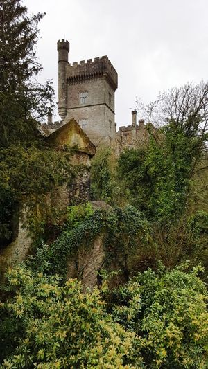 Castle View  Beauty In Nature Architecture Old Buildings Beautiful Old Buildings Aged Stone Trees And Sky No People Neighborhood Map Neighborhood Lismore Castle Co Waterford Ireland