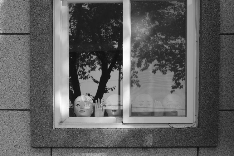 Statue seen through window
