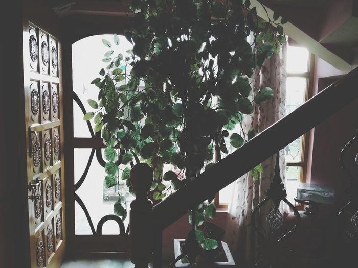 view Indoors