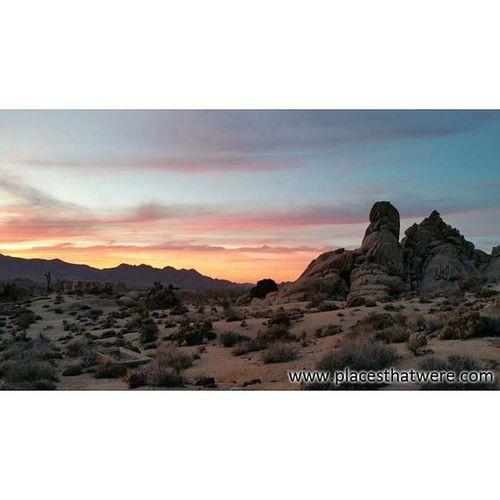 Sunset over Joshua Tree Joshuatree California Ryanranch Rurex Roadtrip Mojave