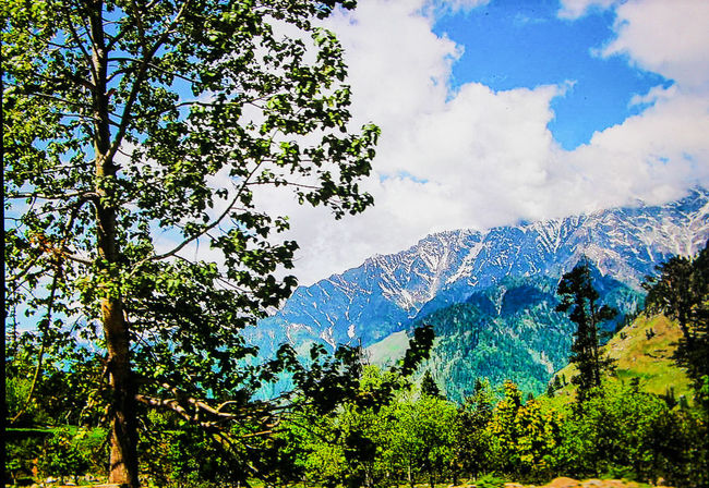 BEAUTY IN KULU VALLEY, HIMACHAL PRADESH, INDIA Tourism Tourist Destination Tourist Attraction  Tourism Spot Snowcapped Mountain Clouds And Sky Plant Beauty Plant Tree Mountain Blue Sky Cloud - Sky Greenery Flora Lush Foliage Spring Green Woods Lush - Description Vegetation Leaves Foliage The Great Outdoors - 2018 EyeEm Awards The Creative - 2018 EyeEm Awards