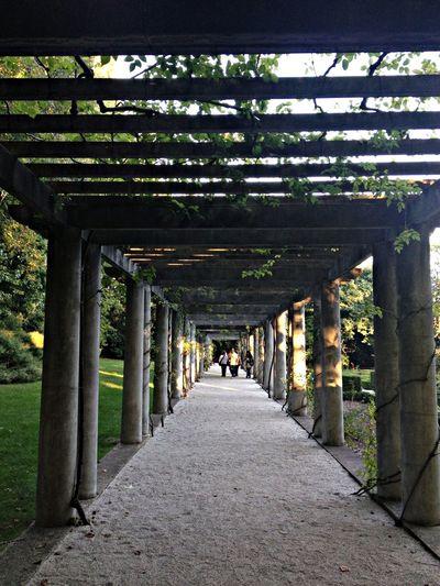 EyeEm Porto Garden Porto