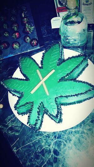 MaryJane Birthday Cake Green Government Lies