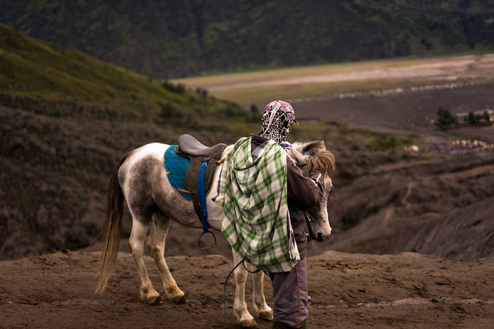 Bored Bored Af Boredom Bromo Bromo Mountain Connected With Nature Connection Horse Horse And Rider Horse Life Horse Photography  INDONESIA Indonesia_photography Local Mount Bromo Outdoors Travel Travel Photography Travelphotography
